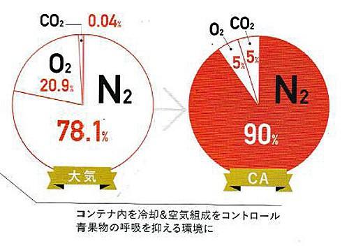 コンテナ内の空気組成の割合