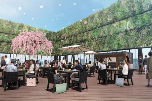 櫻ノ茶屋のイメージ