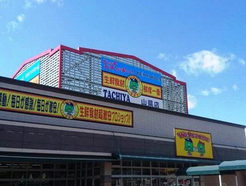 タチヤ山県店