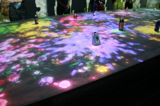 花や植物の映像がテーブルに映し出される