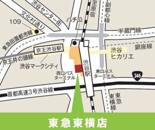 20160923nitorishibuya 544x458 - ニトリ/東急東横店にデコホーム出店