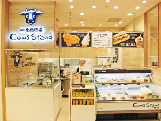 Cows Stand