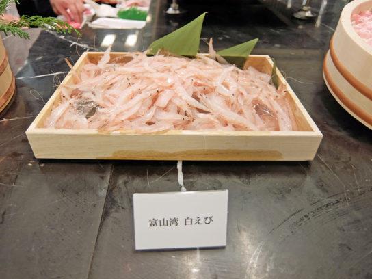 富山湾産白えび