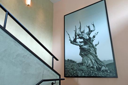 2階へつづく階段壁面のアート作品