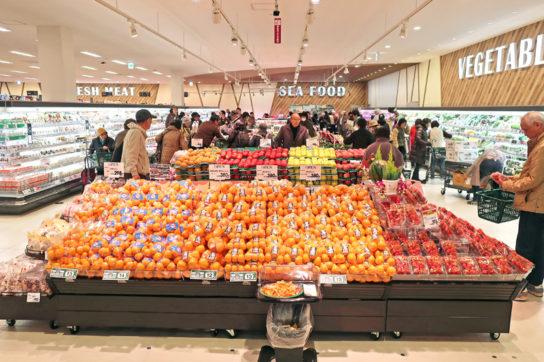 20171201peacock 8 544x362 - イオンマーケット/5年8か月ぶりの出店、団地再生で柏市に「豊四季台店」