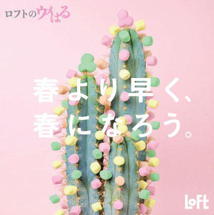 20180110loft1 - ロフト/後楽園ロフト 東京ドームシティ ラクーア店を改装オープン