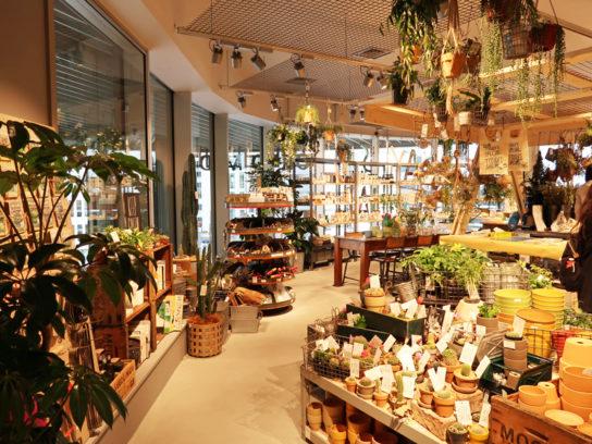 食品、雑貨、本、衣服、植物などそろう