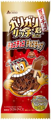 ガリガリ君リッチチョコチョコチョコチップ