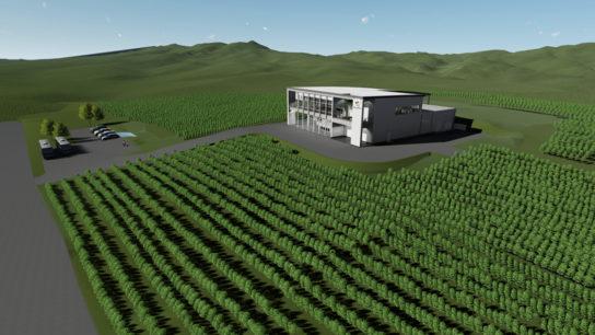 360度畑に囲まれたブティックワイナリー