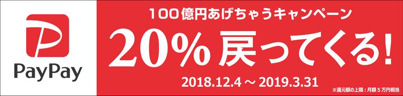 20181206paypay - PayPay/「100億円あげちゃうキャンペーン」実施