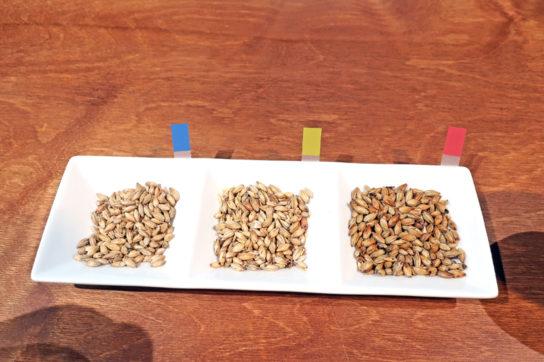 左からダイヤモンド麦芽・ミュンヒナー麦芽・カラメル麦芽