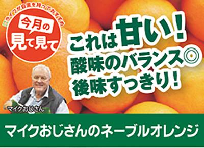 マイクおじさんのネーブルオレンジ