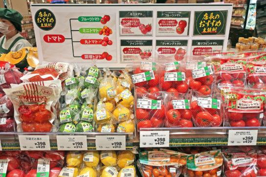 トマトの品種別の特徴を解説