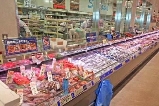 豊洲市場で仕入れた丸魚を販売