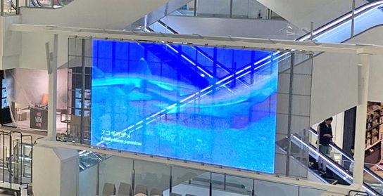 県内最大級の透過型 LED ビジョン(横 7m×縦 3m)