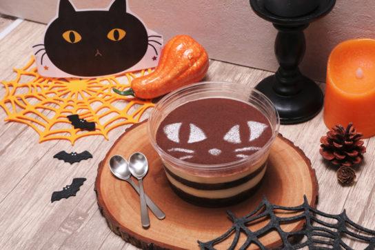 黒猫ティラミス