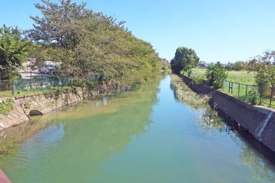 台風19号の影響で増水した河川