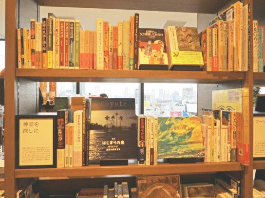 旅に関する書籍を集めた