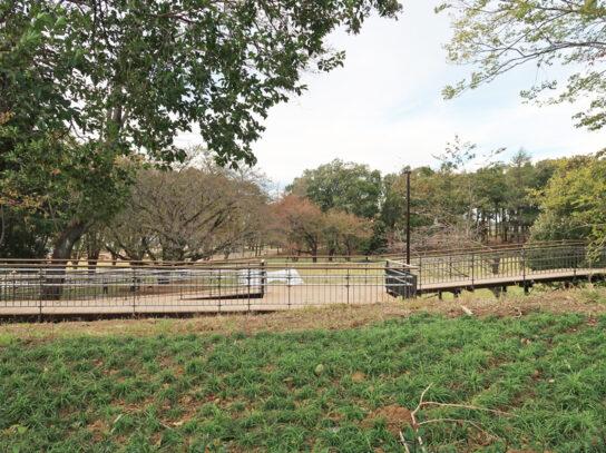 公園とスムーズにつながる設計