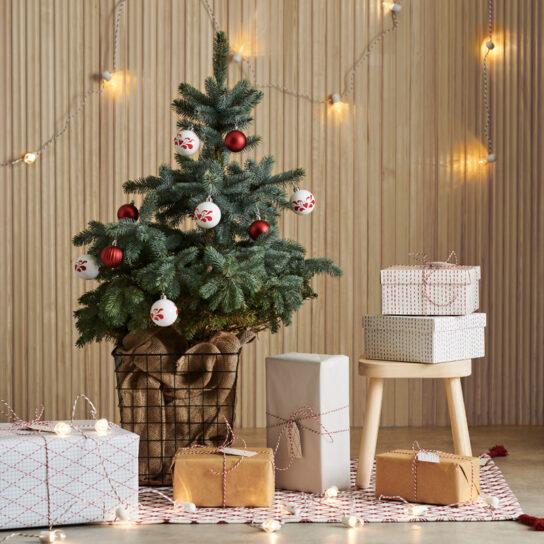 クリスマスツリーのディスプレイイメージ