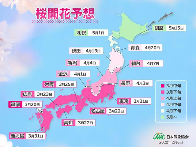 20200210sakura - 桜開花予想/全国的に平年より早い「開花トップ」は福岡3月20日