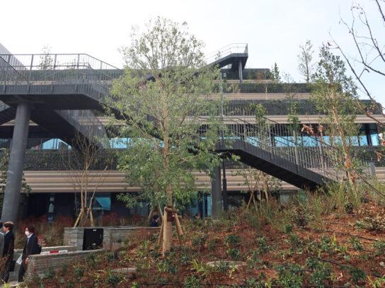 緑豊かな施設