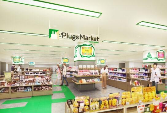 Plugs Market