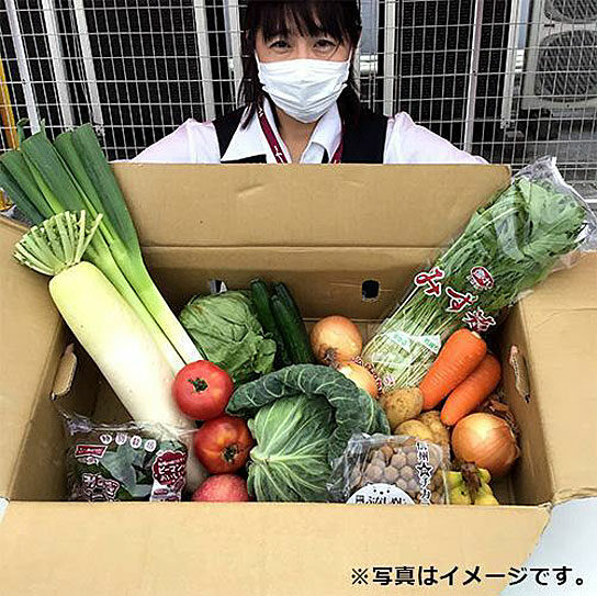 野菜・果物セットの例