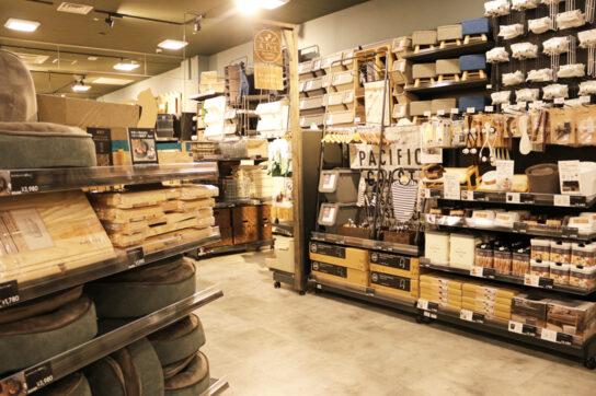 20200717c3 544x362 - カインズ/自分らしいDIY生活提案「Style Factoryららぽーと海老名店」