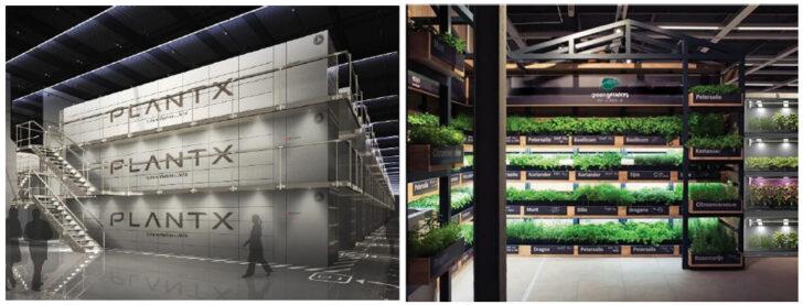 野菜の「製造小売」開始