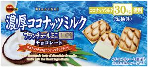 ブランチュールミニDX濃厚ココナッツミルクチョコレート