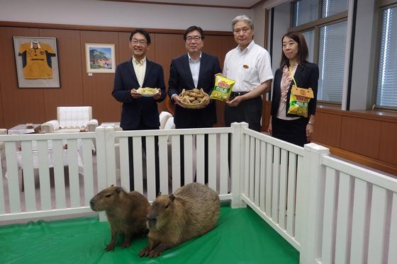 カピバラののりとソルトが栃木県の福田富一知事を表敬訪問