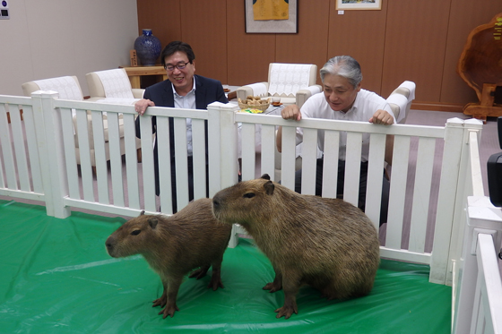 ポテトチップス「のりしお」PR大使・カピバラののりとソルト