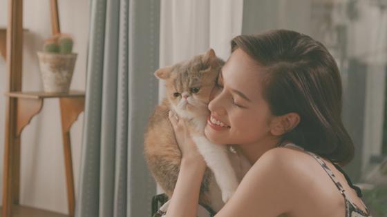 タレント猫のアリスちゃんが水原さんの飼い猫として出演