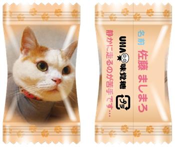 20161003uha1 - UHA味覚糖/愛猫の写真がパッケージになるフルーツキャンディ「にゃんコレ」